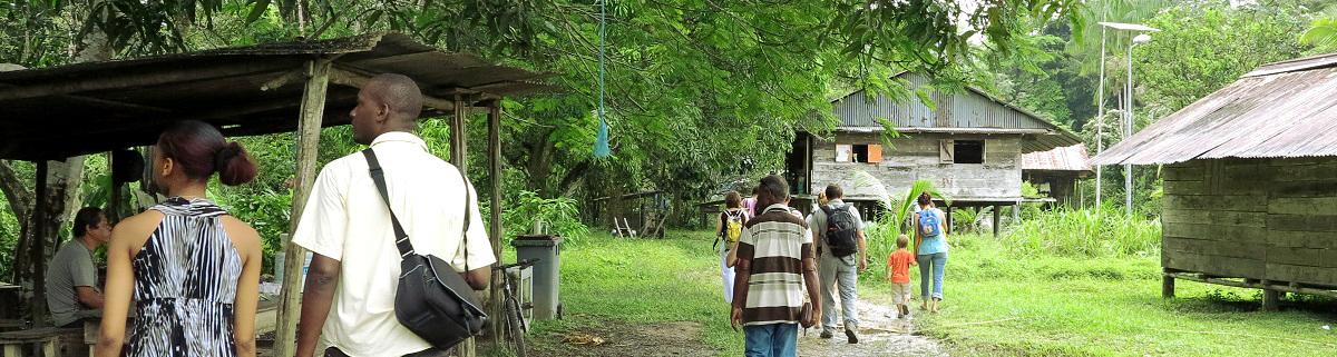 DLTV - Développement local et touristique des villages