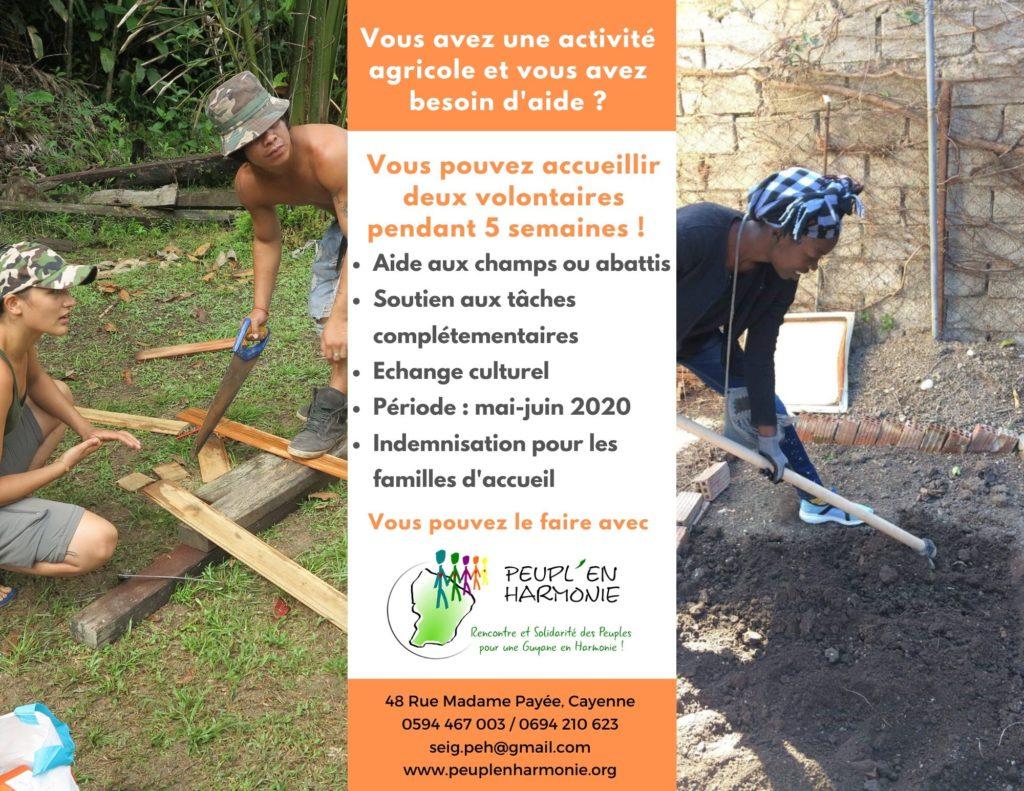 Projet de Volontariat Agricole en Guyane – Mai 2020